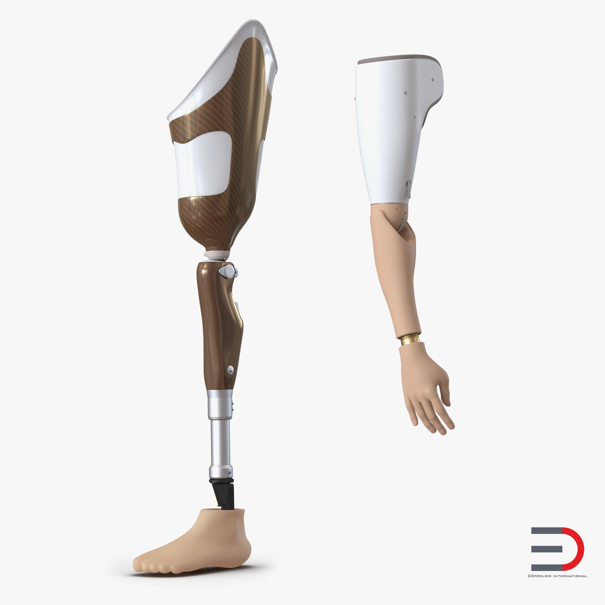 D Prosthetic Leg Arm D Model DModeling Pinterest - Designer creates see through 3d printed prosthetics made from titanium