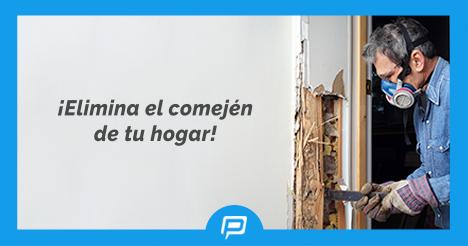 Haz tu pedido y recibe respuesta en minutos de #Exterminadores Certificados #Resuelveya #PingPro