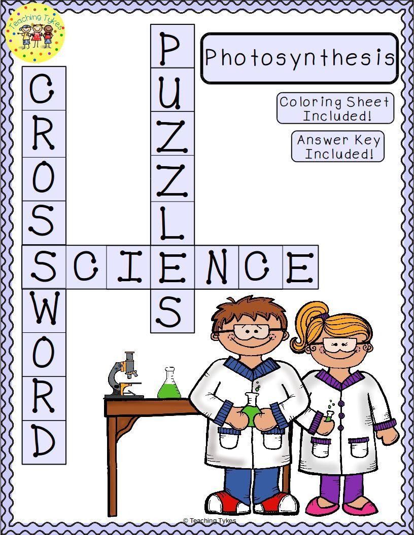 Photosynthesis Crossword Puzzle Mytptstore Pinterest