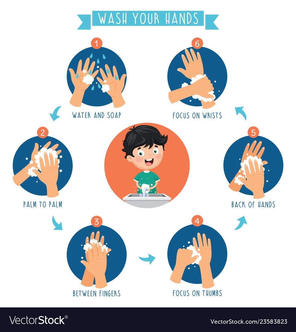 Of Washing Hands Vector Image On Mencuci Tangan Pendidikan