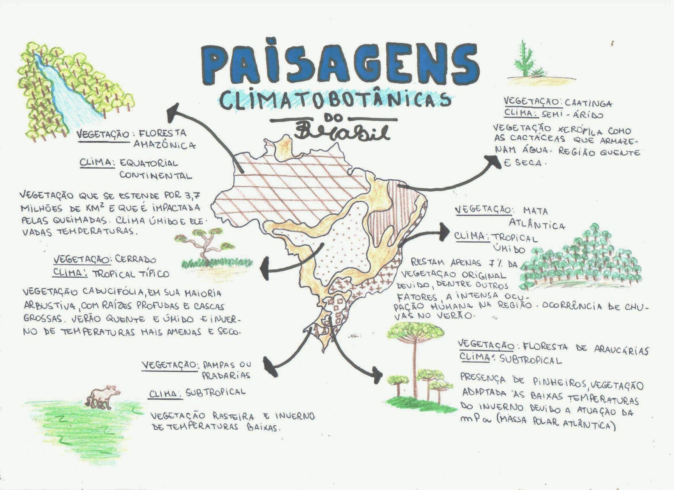 mapa mental geografia - Pesquisa Google | Estudos | Pinterest ...