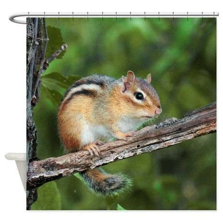 Chippy Shower Curtain on CafePress.com