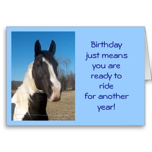 Horse Birthday Card Zazzle Com Horse Birthday Happy Birthday Horse Happy Birthday Pictures