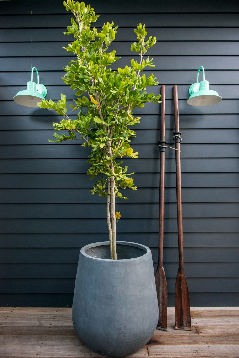 Exterior Wall Lights From Barn Light Australia Wall Colour Is Taubmans Mojo