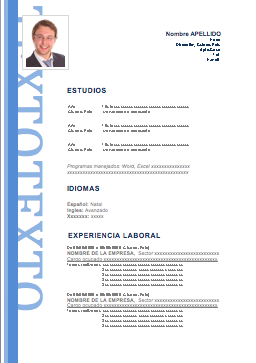 Curriculum Vitae Profesionales Erick Curriculum Ideal Home Y Design