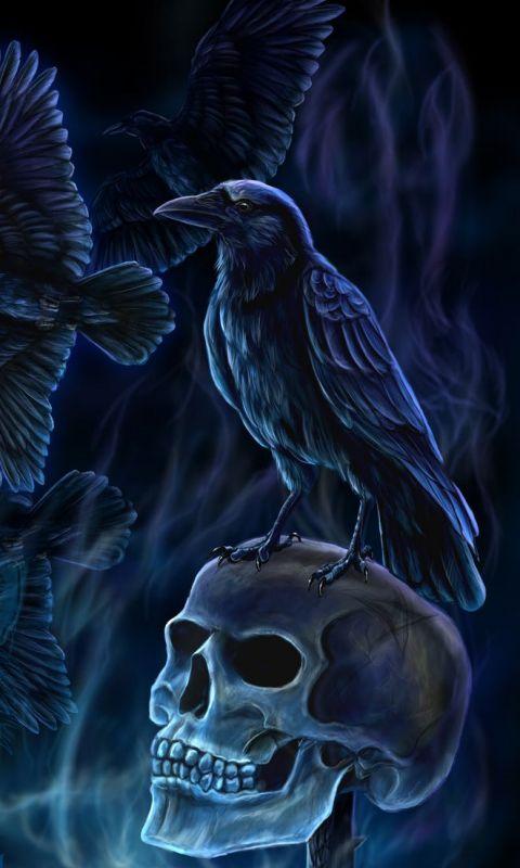 Download dark emperors 480 X 800 Wallpapers | mobile9 | Skulls