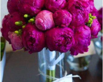 Bouquet de 25 feuilles de Magnolia frais pour être utilisé comme marque-places / cartes descorte / véritable couronne de feuille / guirlande florale des arrangements et bouquets de fleurs