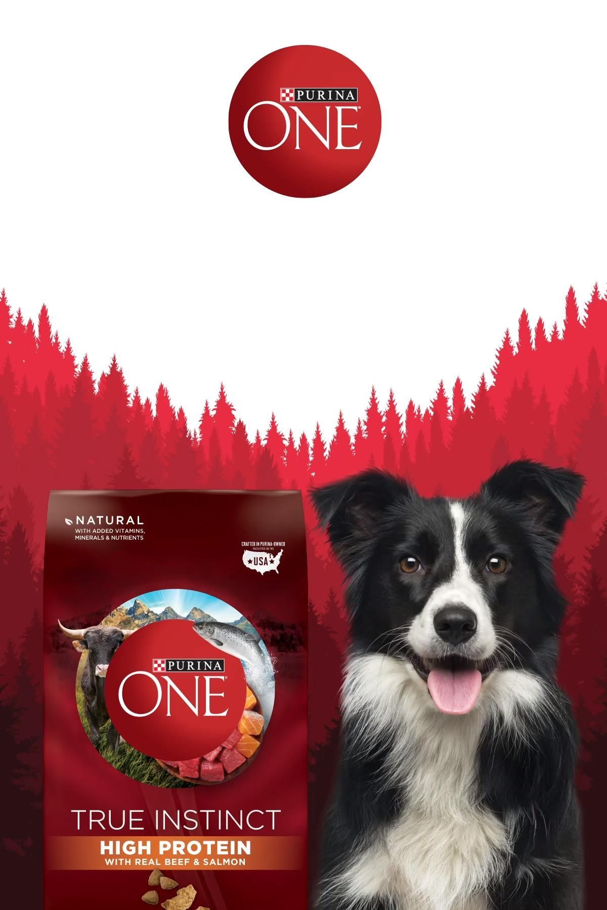 Inspired by a dog's instinct to choose nutrient-dense foods in nature, Purina ONE® True Instinct High Protein was created with 32% protein, including real beef as the #1 ingredient, with a SmartBlend of real salmon and other ingredients to provide the protein, energy and other nutrients active adult dogs need. Nature plus science helps provide 100% complete and balanced nutrition to support whole body health while satisfying your active dog's natural instinct.