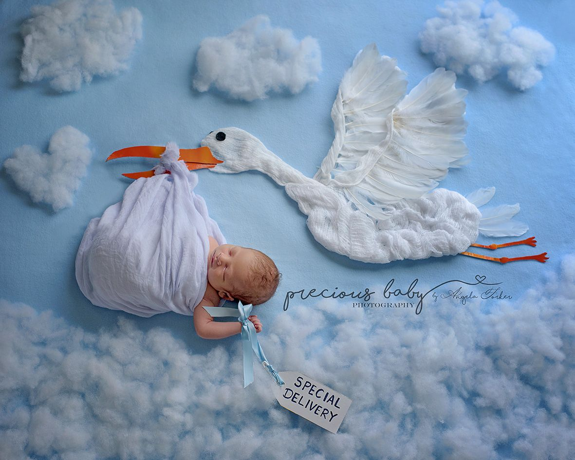 Baby newborn boy being carried by a stork with special