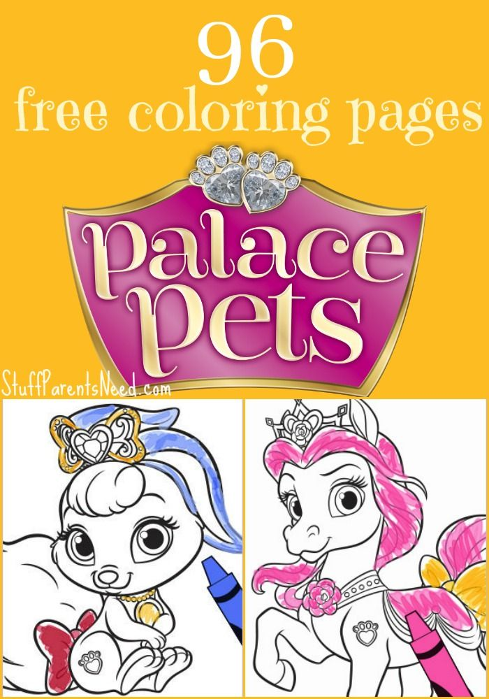- Palace Pets Pumpkin Coloring Pages Review Pets News And Review