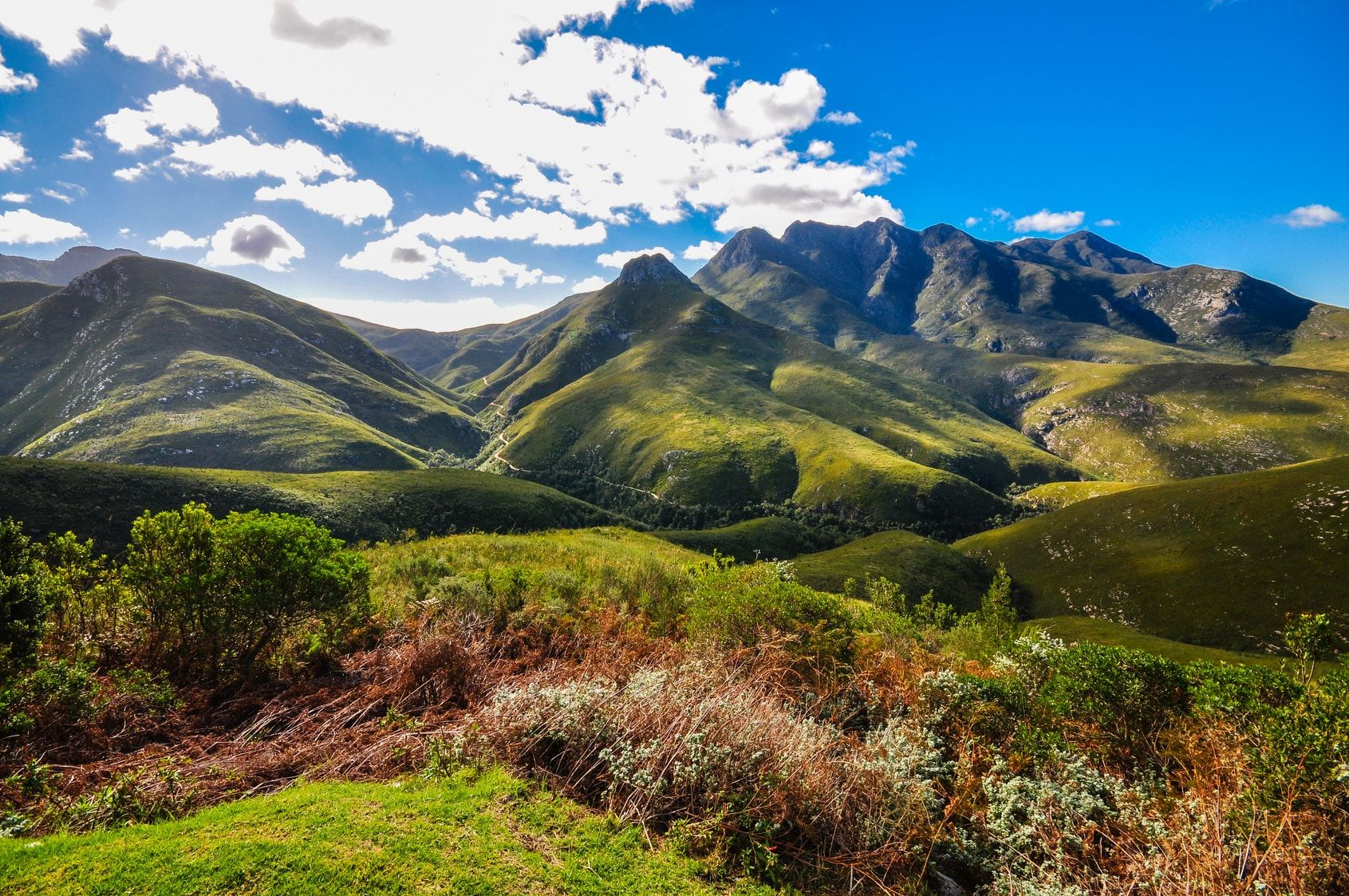 A Zest Guide to Touring South Africa's Garden Route
