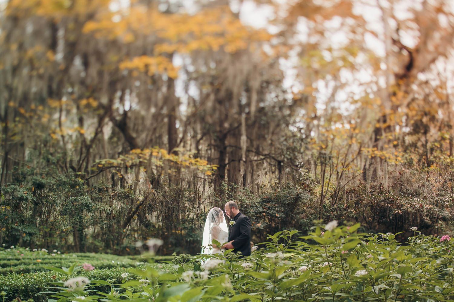 Magnolia Plantation & Gardens in Charleston, SC | Heather and James ...