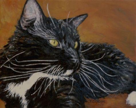 Bigotes pintura al óleo del arte del gato de retratos de mascotas - Debra Sisson