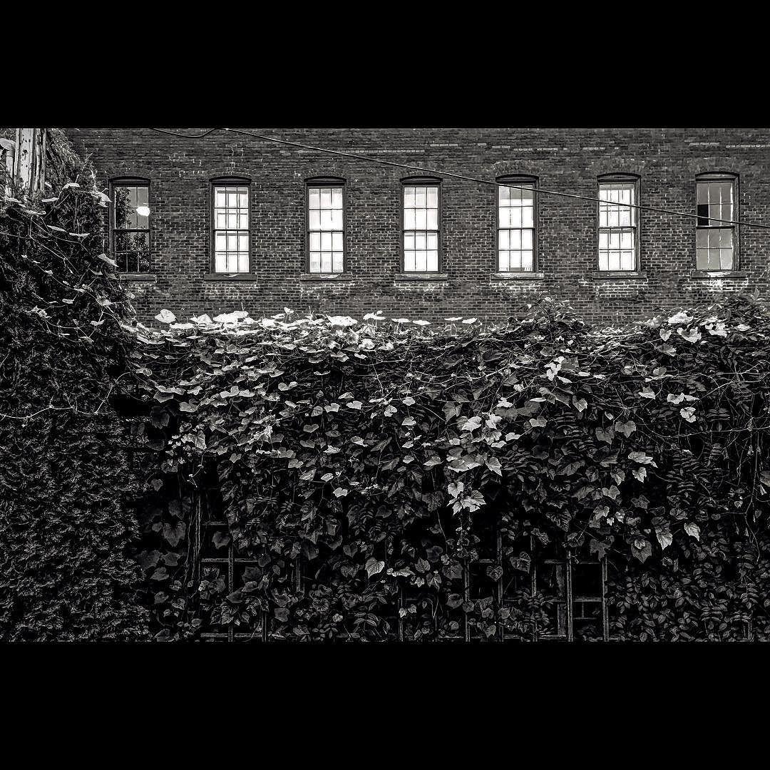 Remains #blackandwhitephotography #brick #factory #capturemn #skrwtapp #relightapp #history #minnesota #stillwatermn