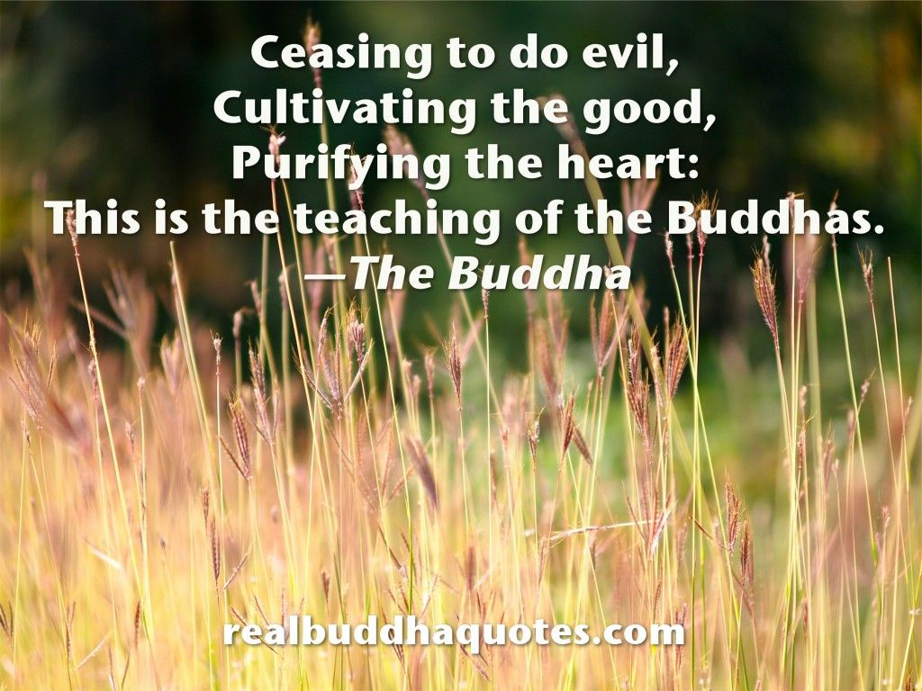 Real Buddha Quotes Real Buddha Quotes Page 2 Verified Quotes From The Buddhist