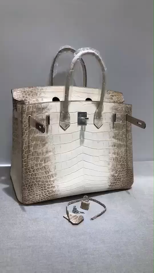 Photo of Luxury Genuine Alligator Handbag