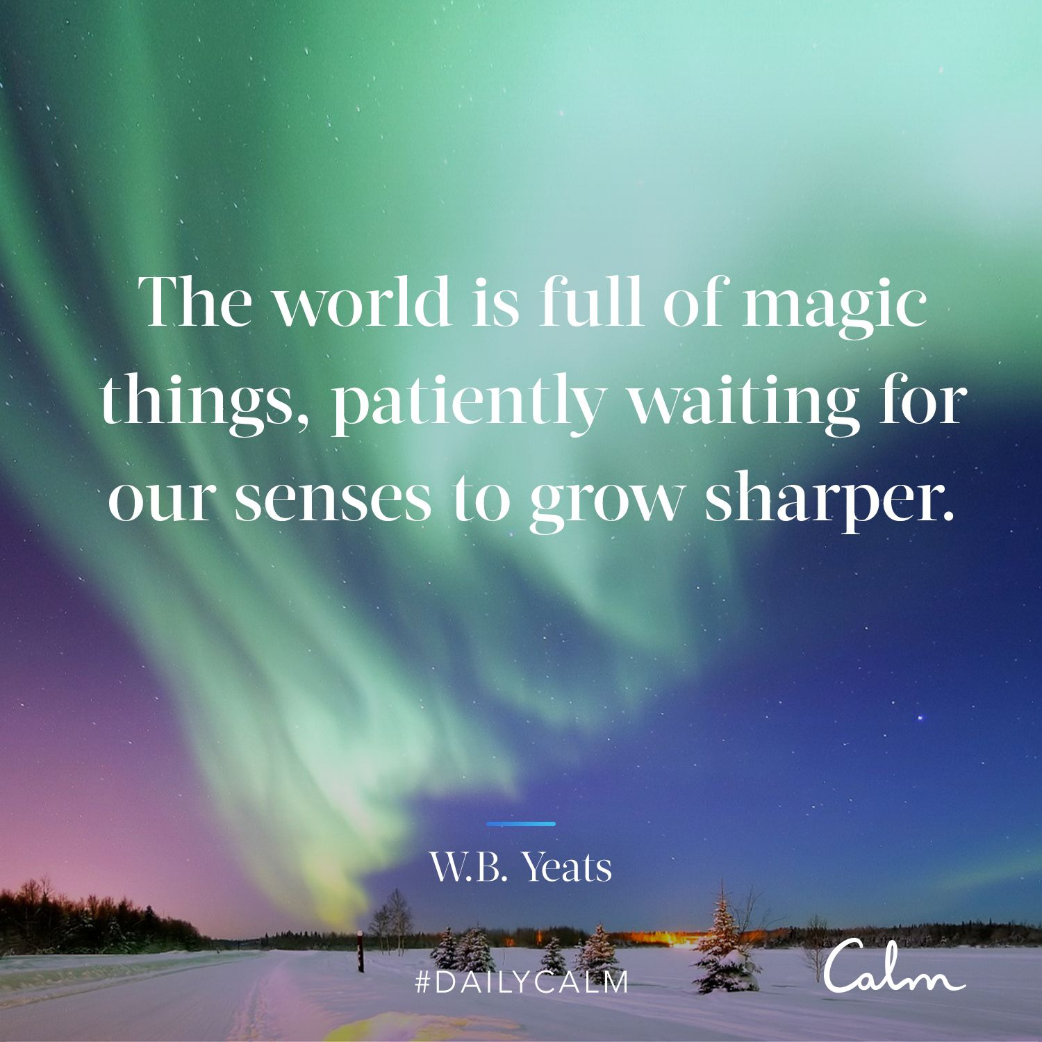 Daily calm quotes the world is full of magic things