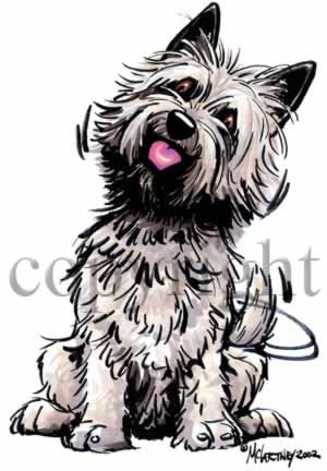 Cairn Terrier Cartoon | Cairn terrier, Cats that dont shed, Terrier