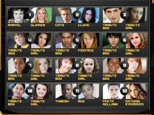 The tributes... We never even knew fifteen of their names... They died to save the Mockingjay... *sob*