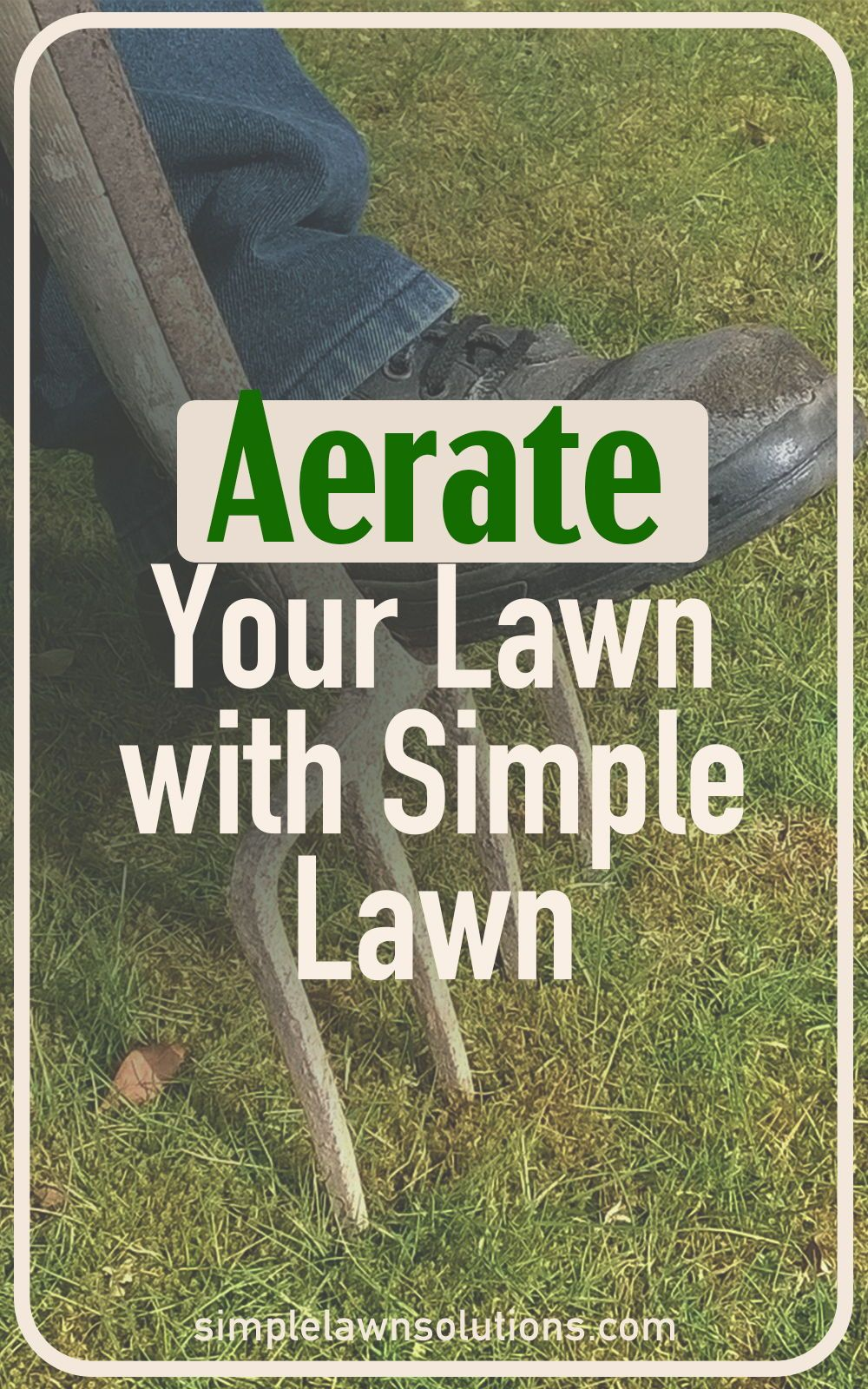 Aerate your lawn with simple lawn in 2020 green backyard