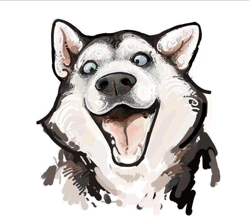 Siberian Husky | Tatto | Pinterest | Lobos, Huskies siberianos y Dibujo