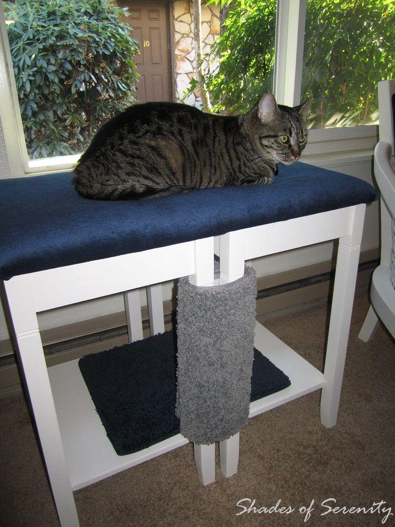 Homemade Cat Napper Diy Cat Tree Cat Diy Diy Cat Bed