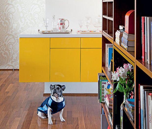 5 dicas de decoração para quem tem animais de estimação em casa;
