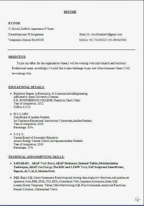 curriculum vitae services Sample Template Example ofExcellent ...