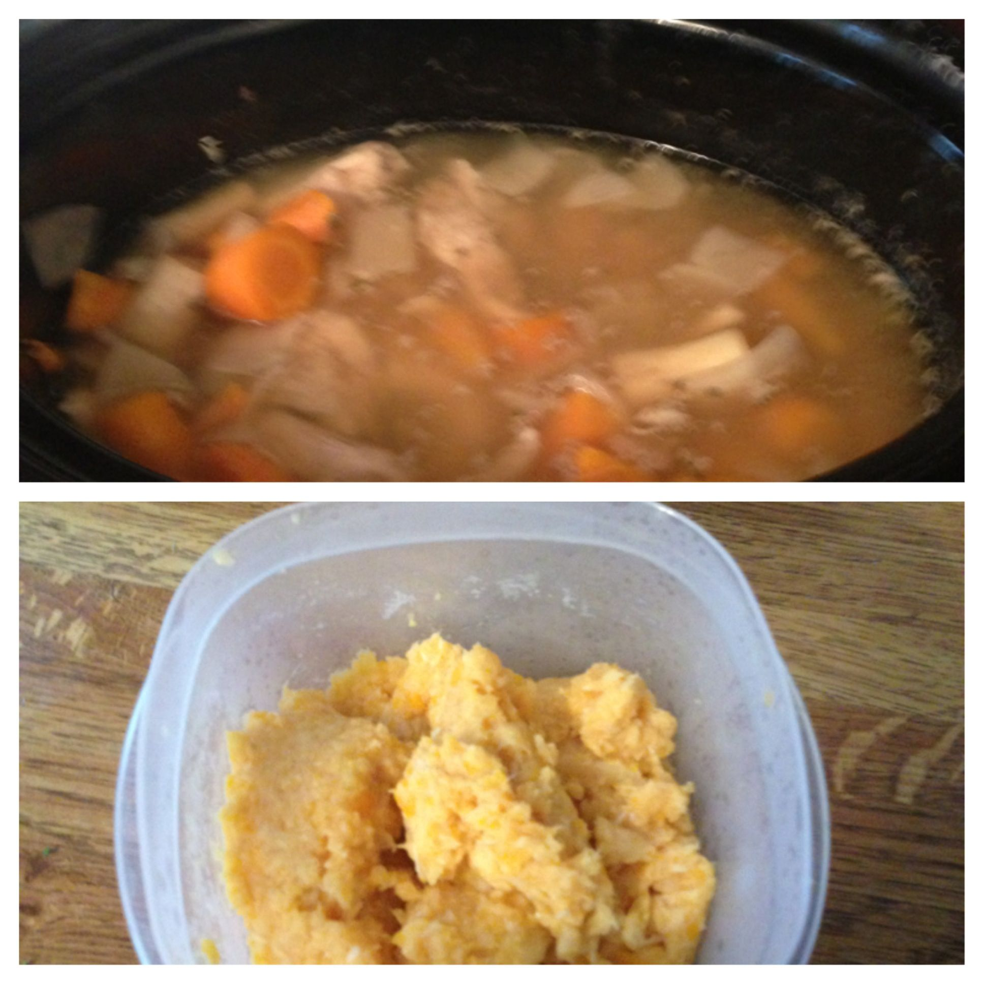 Easy crock pot chicken that doubles as baby food when pureed easy crock pot chicken that doubles as baby food when pureed chicken chicken broth forumfinder Choice Image