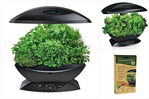 Aerogarden 7 Pod Indoor Garden Garden Indoor Garden 640 x 480