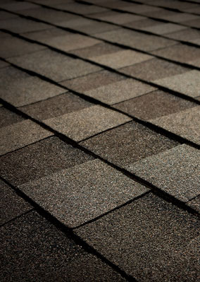 Best Heritage Natural Timber Tamko Shingle Colors Aging 400 x 300