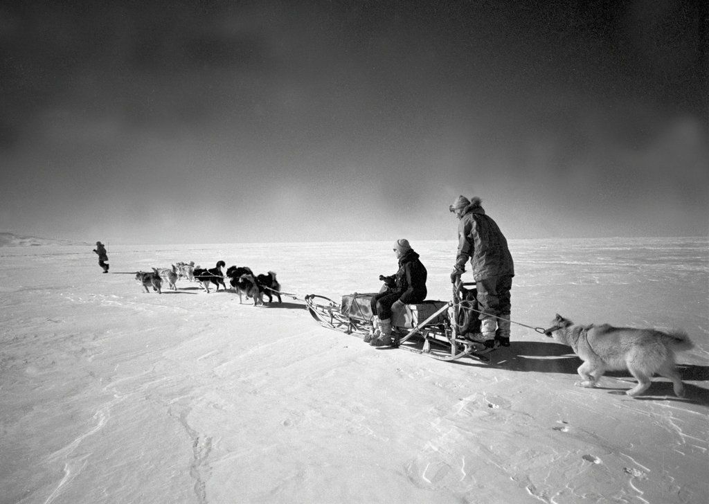 Nov. 16, 1962 In Antarctica, dogs hauled researchers from