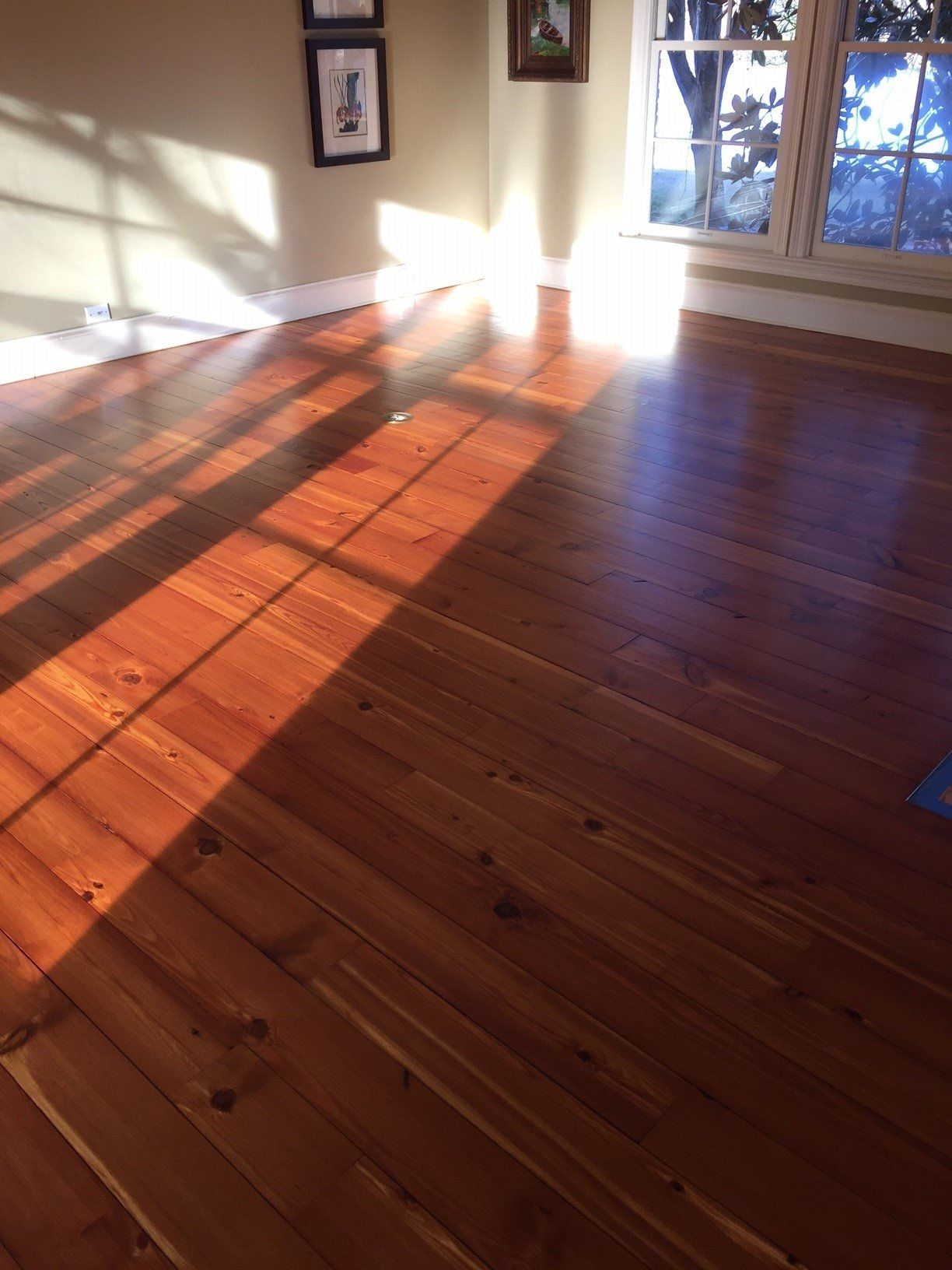 Daniel hardwood floors jackson ms glblcom pinterest