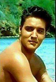 Blue Hawaii Elvis Presley Movie Stars