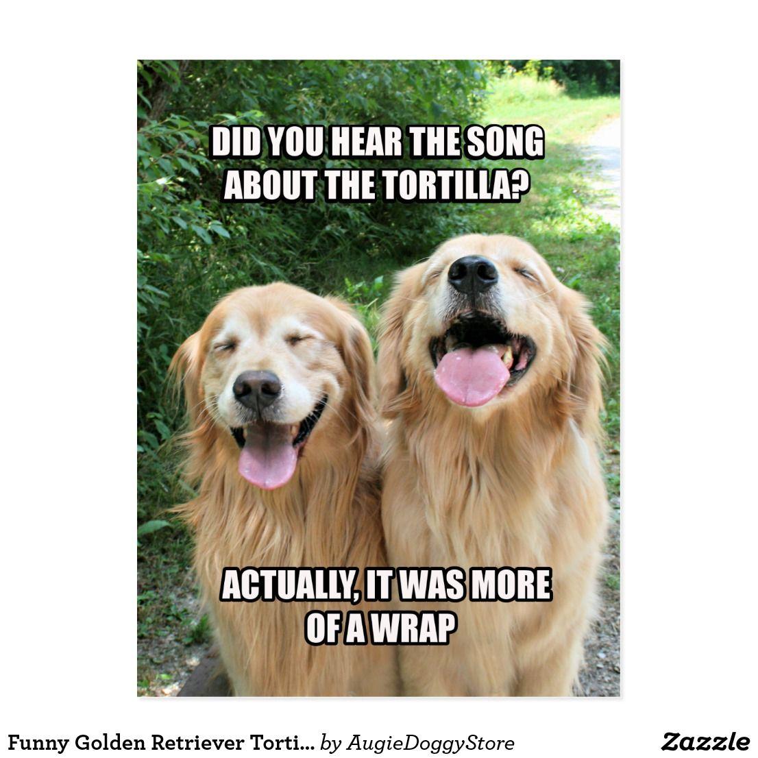 Funny Golden Retriever Tortilla Joke Meme Postcard Zazzle Com