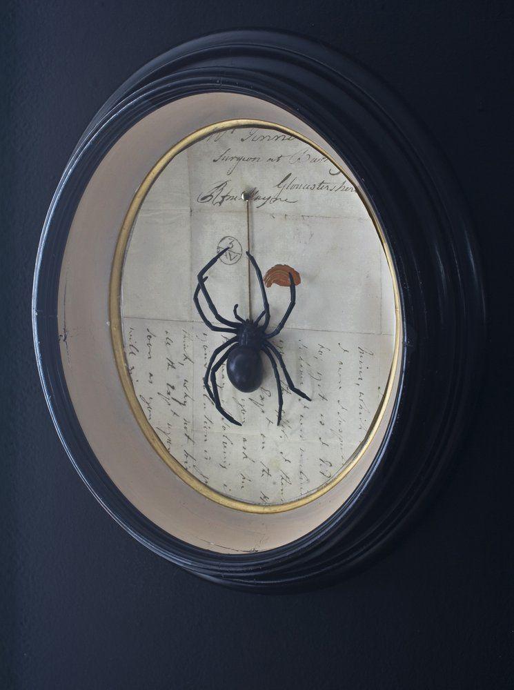 Halloween with Matthew Mead  Book Giveaway Creepy halloween - halloween decorations spider