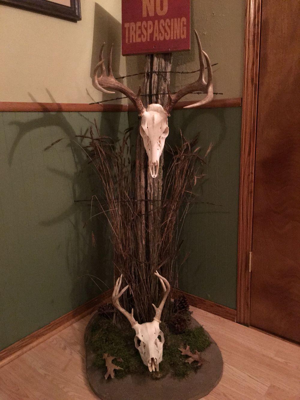 Fence post Whitetail Deer European mount Deer hunting
