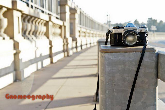 Vintage Camera <3.