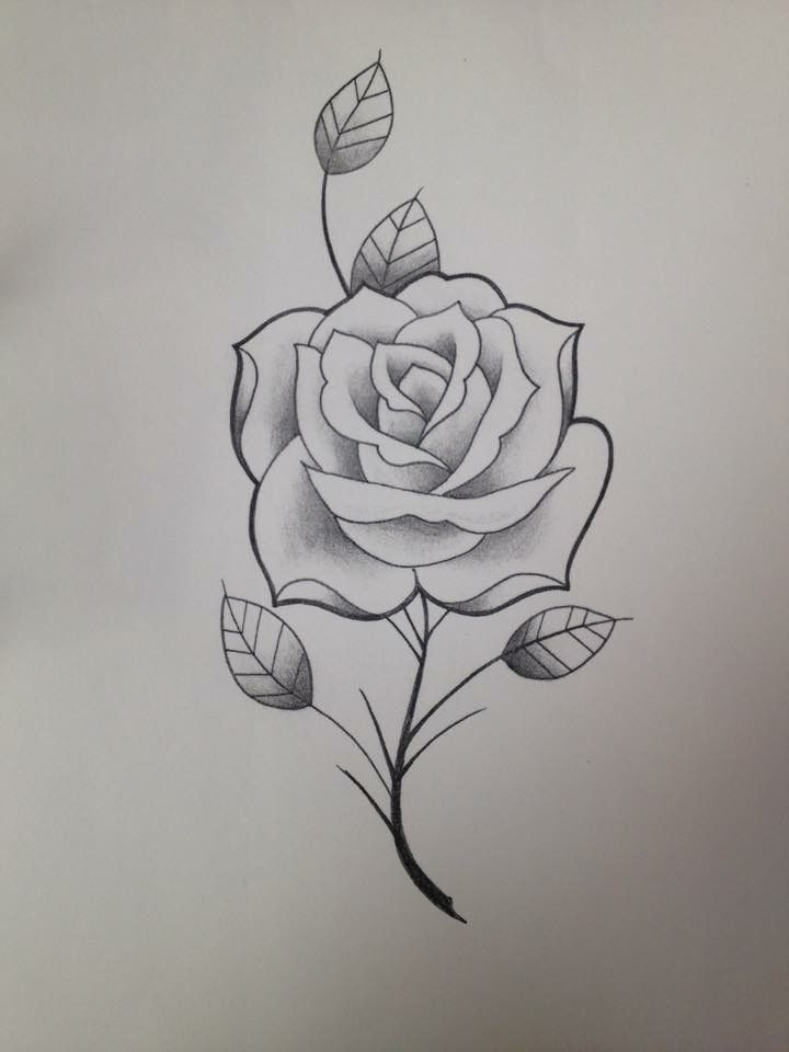 Pin By Oz On Favs Rose Drawing Tattoo Pencil Art Drawings Rose Drawing