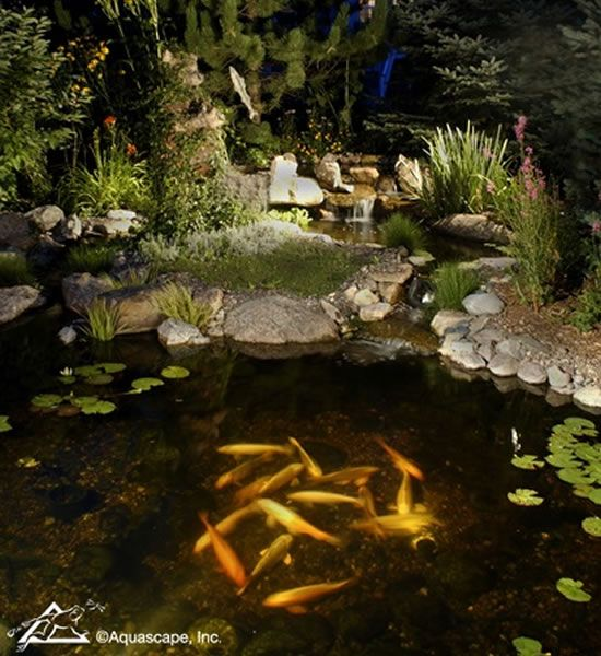 Aquascape Pond With Lights Bring Your Water Feature Or