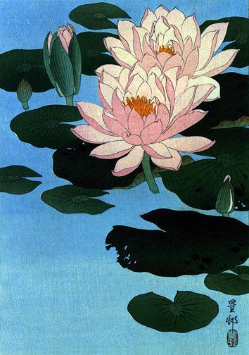 Water Lily 22x30 Japanese Art Print by Koson Japanese Asian Art Japan #honorable_grasshopper