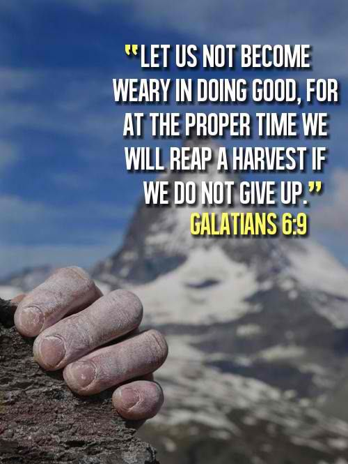 Best Bible Quotes About Love 50 Best Bible Verses For Nurses  Pinterest  Verses Bible And