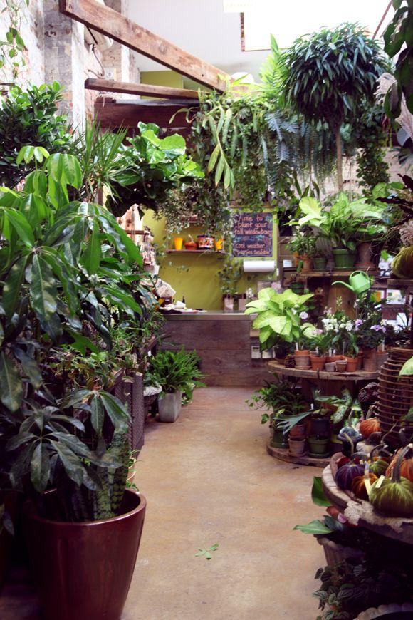 Plant Shop I Love City Planter Plants Indoor Gardens Garden