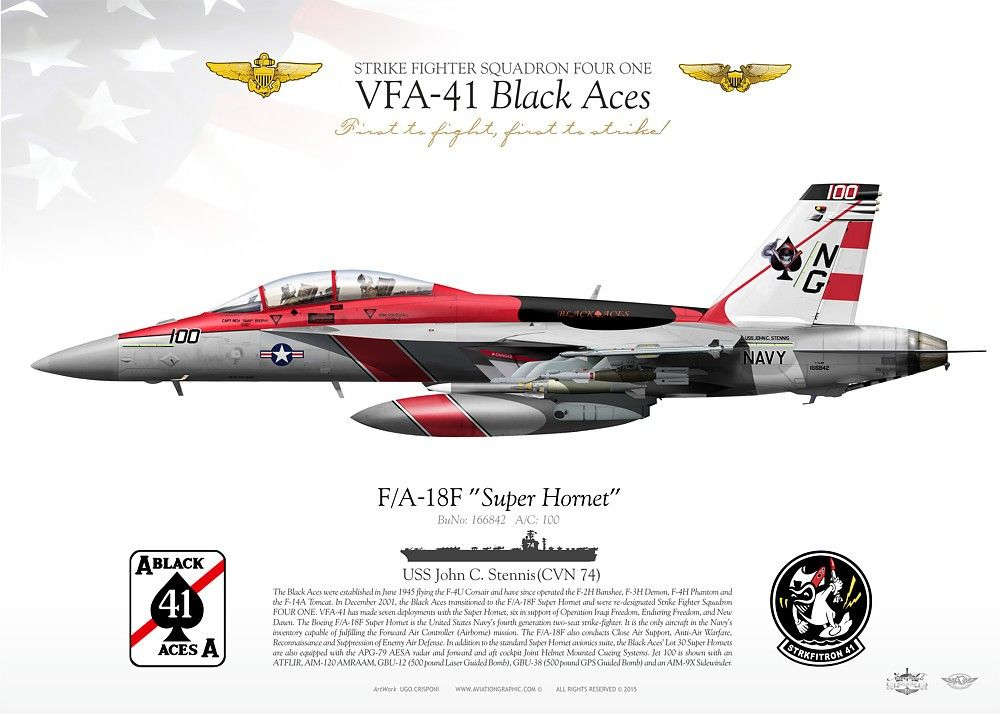 USN VFA-102 Diamondbacks CAG 2011 Lithograph.