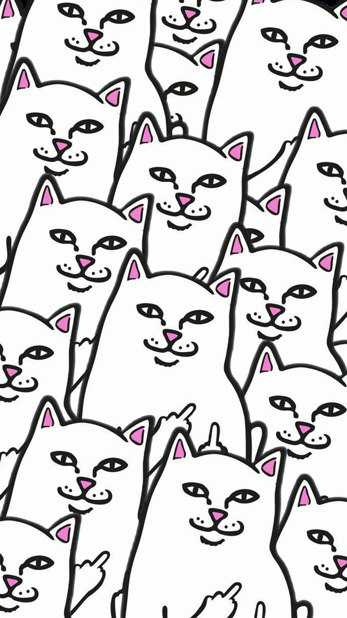 Collage RipnDip Cat phone wallpaper