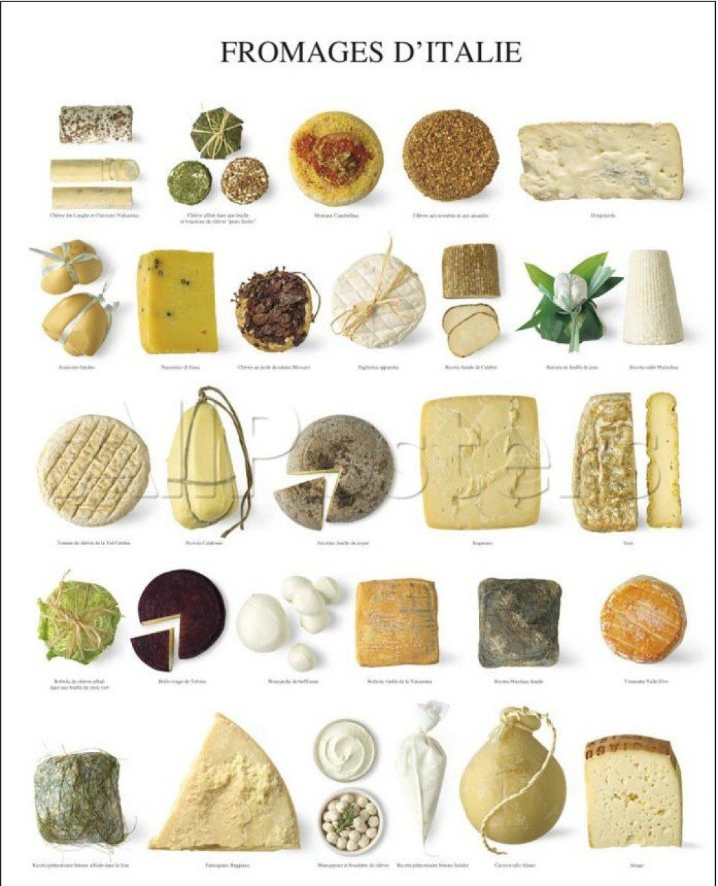 Italy boasts more than 450 cheeses. Many of these are made by traditional methods in their regions of origin. From Asiago to Pecorino Romano, Italian cheeses are among the world's most favorite and are enjoyed in Italy and abroad.