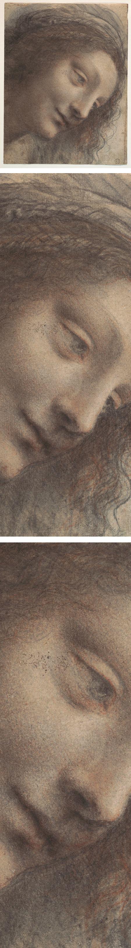 The Head of the Virgin in Three-Quarter View Facing Right, Leonardo da Vinci