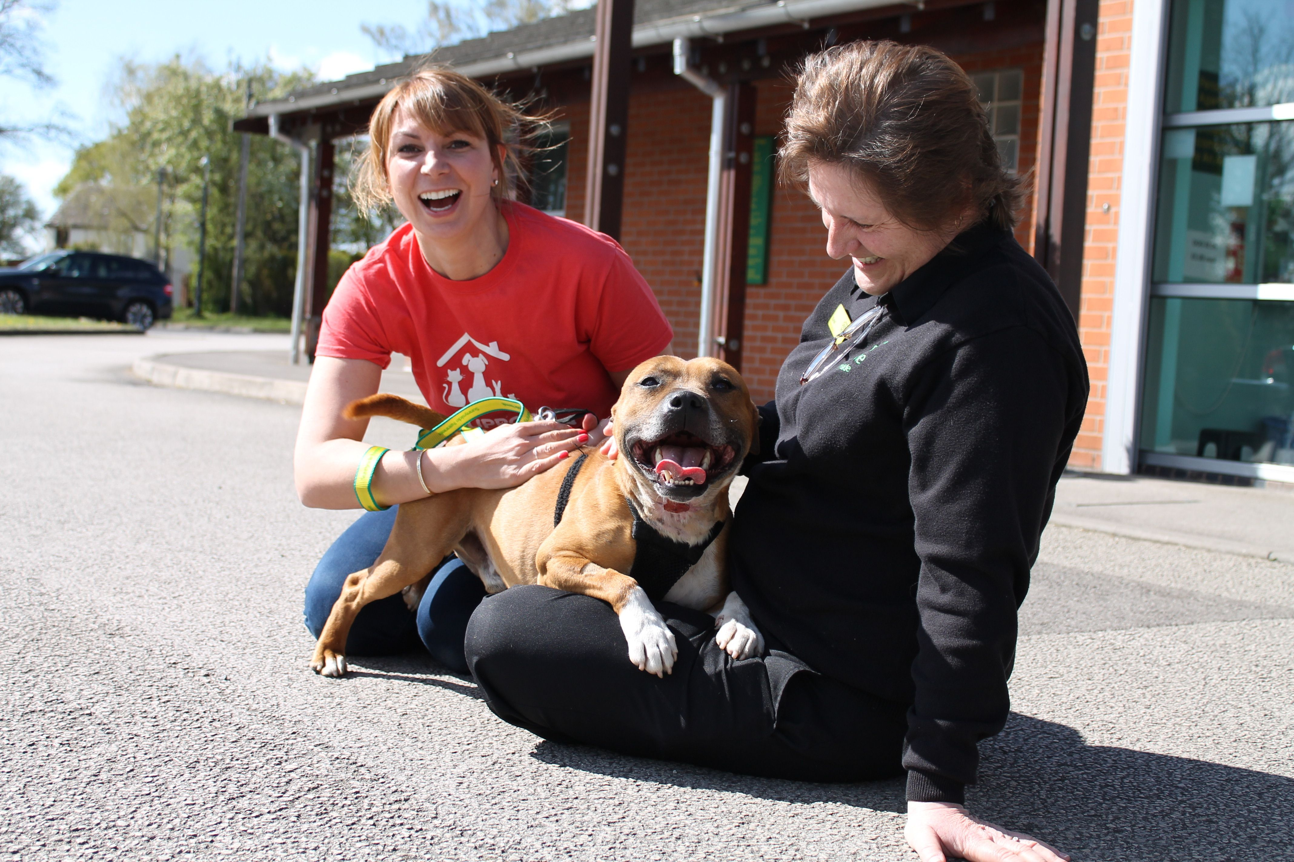 A classic happy photo as we award £50,000 to Birmingham Dogs Home!