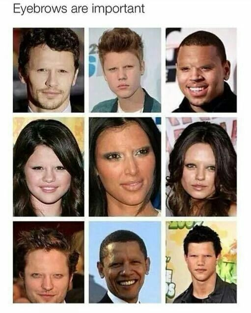Importance Of Eyebrows Funny Pictures Funny Memes Funny Funny