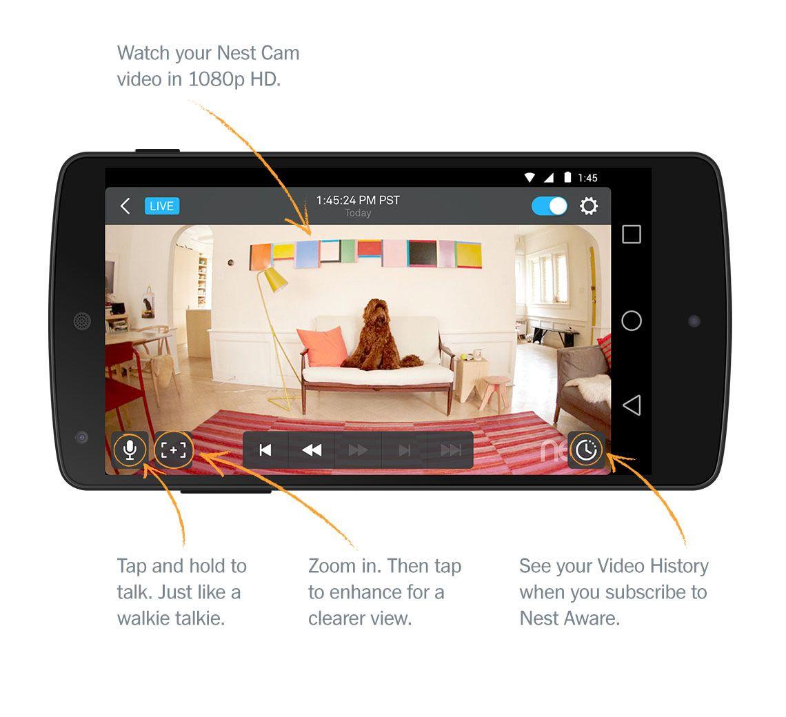 Nest App 5.0! Nest camera, App, Email templates